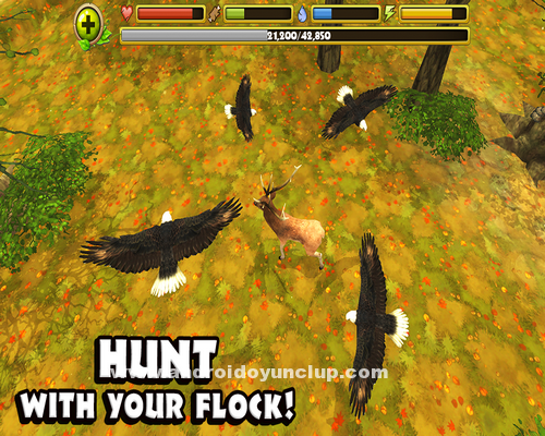 Eagle-Simulator-v1.0-Apk-2