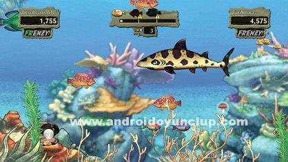 FishLivehileliapkindir